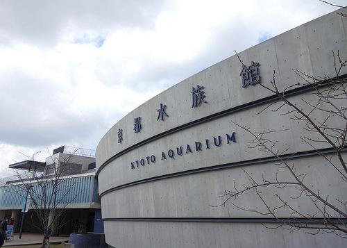 aquarium20170311_04.JPG